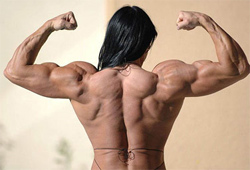 Deciding On The Optimal Steroid Cycles